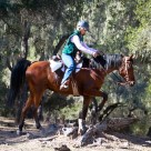 2014 Competitive Trail Ride